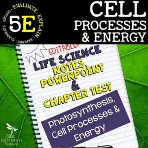 original 2348848 1 300x300 - Cell Processes and Energy Life Science Notes, PowerPoint & Test~ EDITABLE