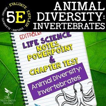 original 2398246 1 - Animal Diversity: Invertebrates Life Science Notes, PowerPoint & Test~ EDITABLE