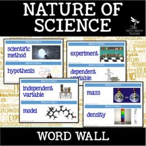 original 2500804 1 300x300 - Nature of Science - Word Wall FREEBIE