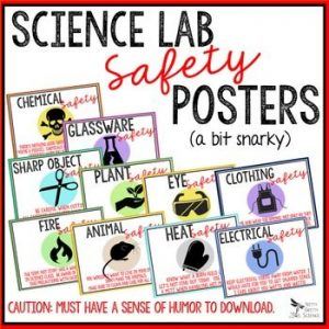 original 2692109 1 300x300 - LAB SAFETY POSTERS - Secondary Science (humor)