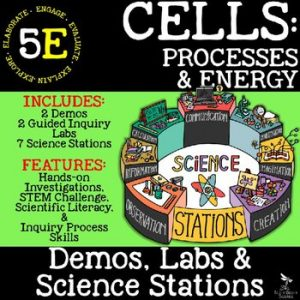 original 2692871 1 300x300 - CELLS: STRUCTURE AND FUNCTION - Demos, Lab & Science Stations