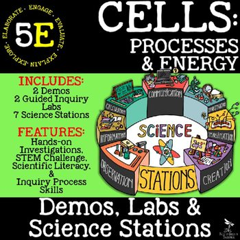 original 2692871 1 - CELLS: STRUCTURE AND FUNCTION - Demos, Lab & Science Stations