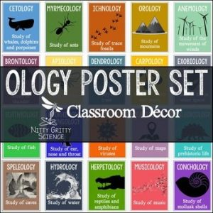 original 2804083 1 300x300 - Science Classroom Posters - OLOGY Poster Set