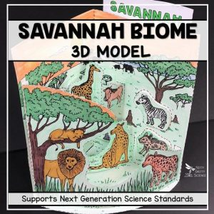savannah biome model 3d model biome project featured image 300x300 - Savannah Biome Model - 3D Model - Biome Project