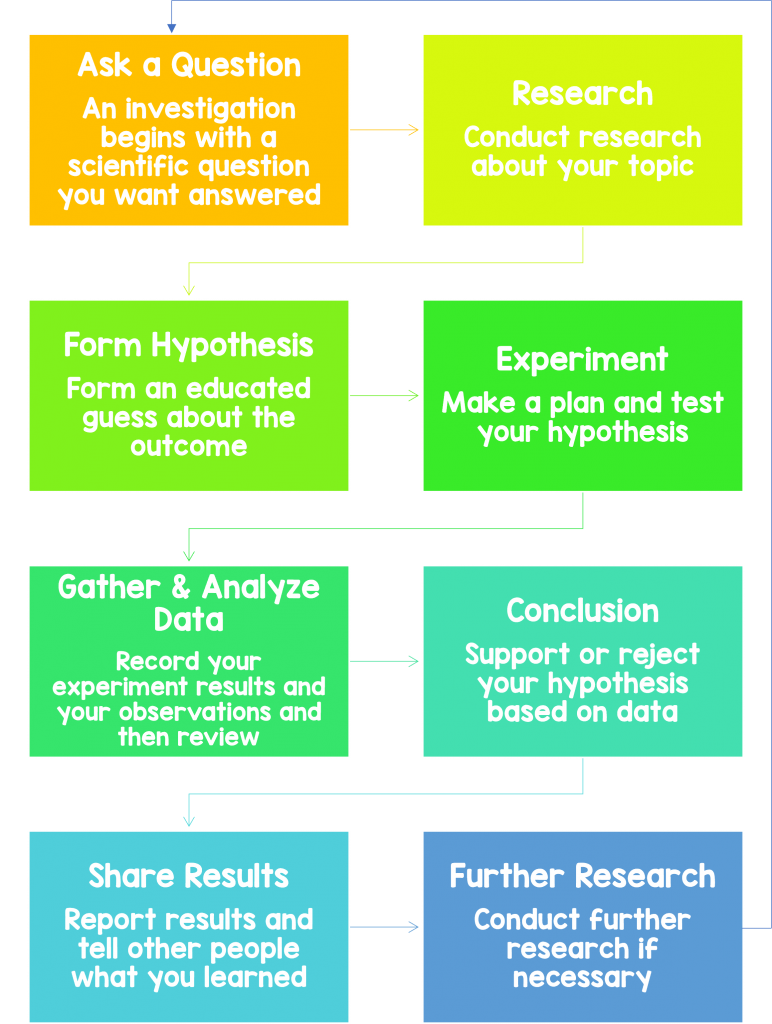 scientific method2 772x1024 - Section 1: The Method of Science