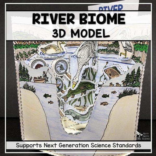 taiga biome model 3d model biome project featured image 600x600 - Taiga Biome Model - 3D Model - Biome Project
