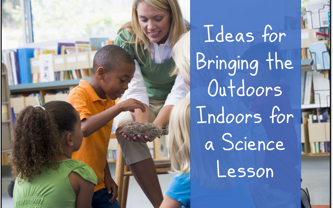 Ideas for Bringing the Outdoors Inside for a Science Lesson