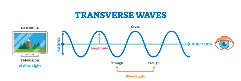 transwave 1024x344 - Section 2: Features of Waves