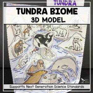 tundra biome model 3d model biome project featured image 300x300 - Tundra Biome Model - 3D Model - Biome Project