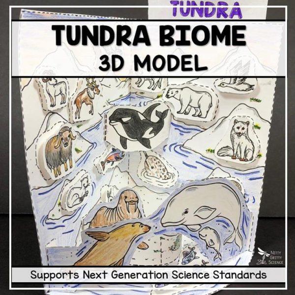 tundra biome model 3d model biome project featured image 600x600 - Tundra Biome Model - 3D Model - Biome Project