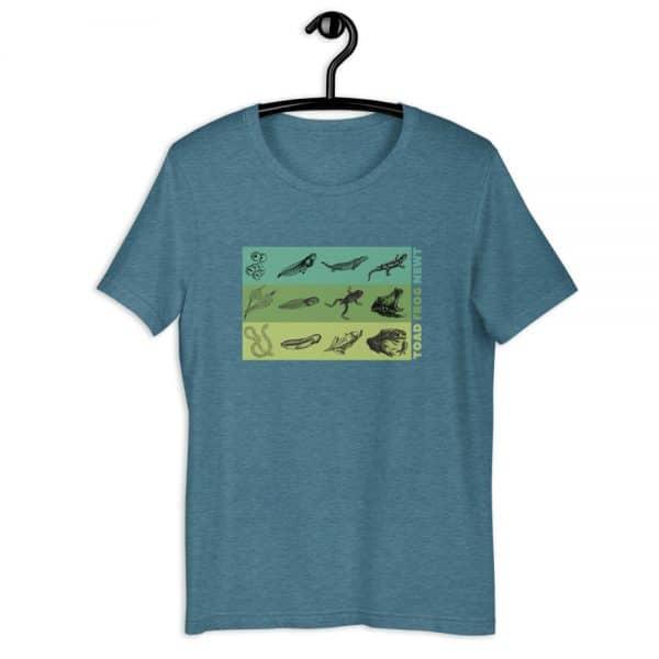 unisex staple t shirt heather deep teal front 610d6e648c725 600x600 - Amphibian Life Cycle