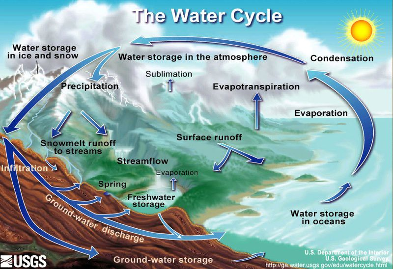 water cycle - Section 3: Cycles in Nature