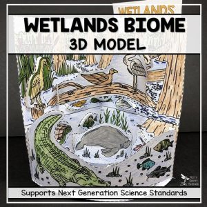 wetland biome model 3d model biome project featured image 300x300 - Wetland Biome Model - 3D Model - Biome Project